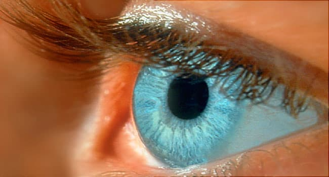39e390182e0 Eye and Vision Quiz  Is Your Eyesight Worsening  About Contacts ...