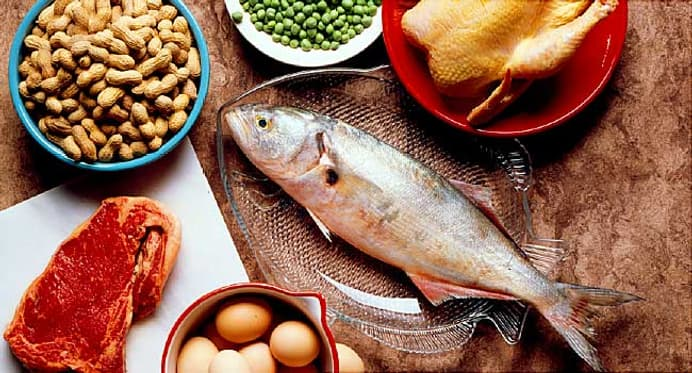 Protein Quiz: Best Protein Sources, High-Protein Diets, and