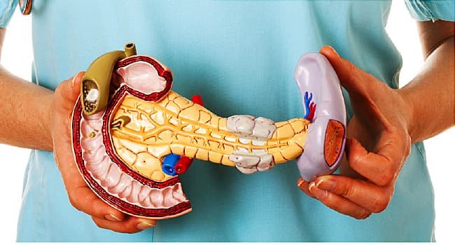 How Well Do You Know Your Pancreas?