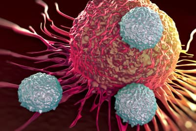 photo of T-cells attacking cancer cell