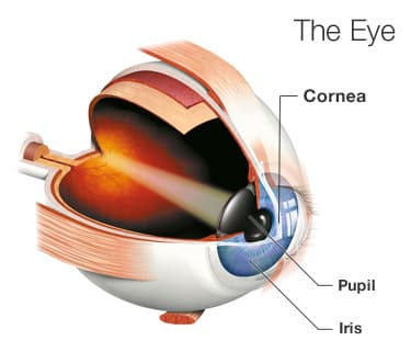 Halos and Glare: Causes, Prevention, and Treatment