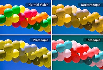 types of color blindness quadtych