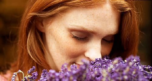 Young woman smelling lavendar