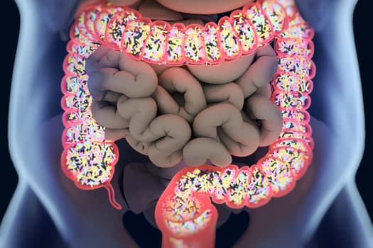 illustration of microbiome