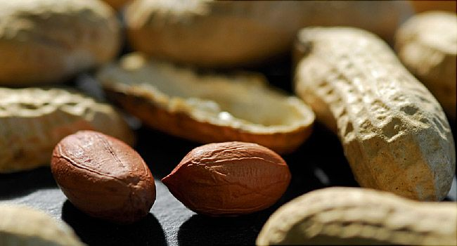 First Treatment for Peanut Allergy Approved by FDA