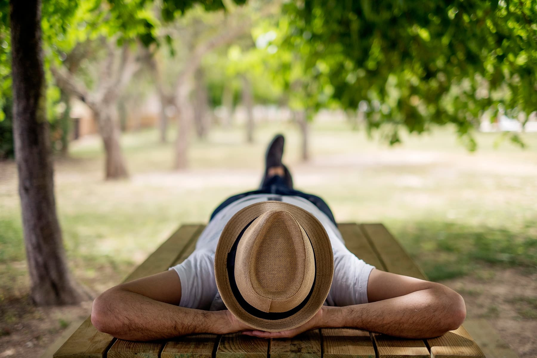 man napping on bench