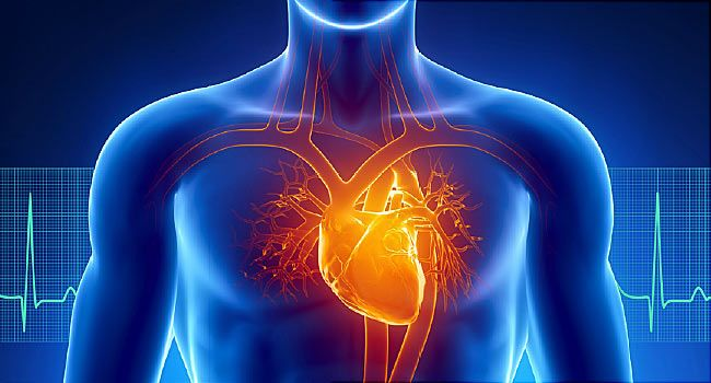 Pictures: How Heart Disease Affects Your Body