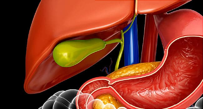 What Does Your Gallbladder Do, and What Can Go Wrong?
