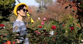 photo of woman in flowers