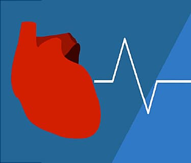 Video on What Causes Heart Palpitations