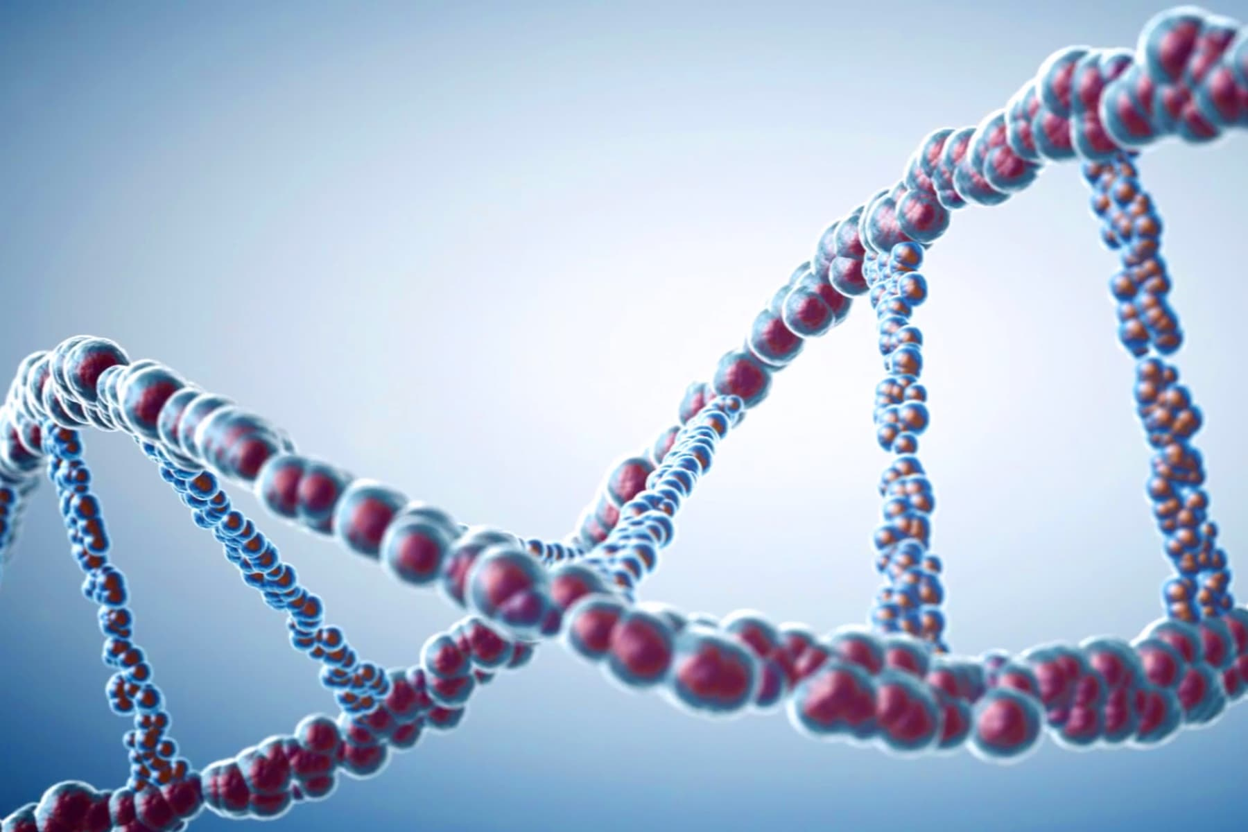 photo illustration of dna