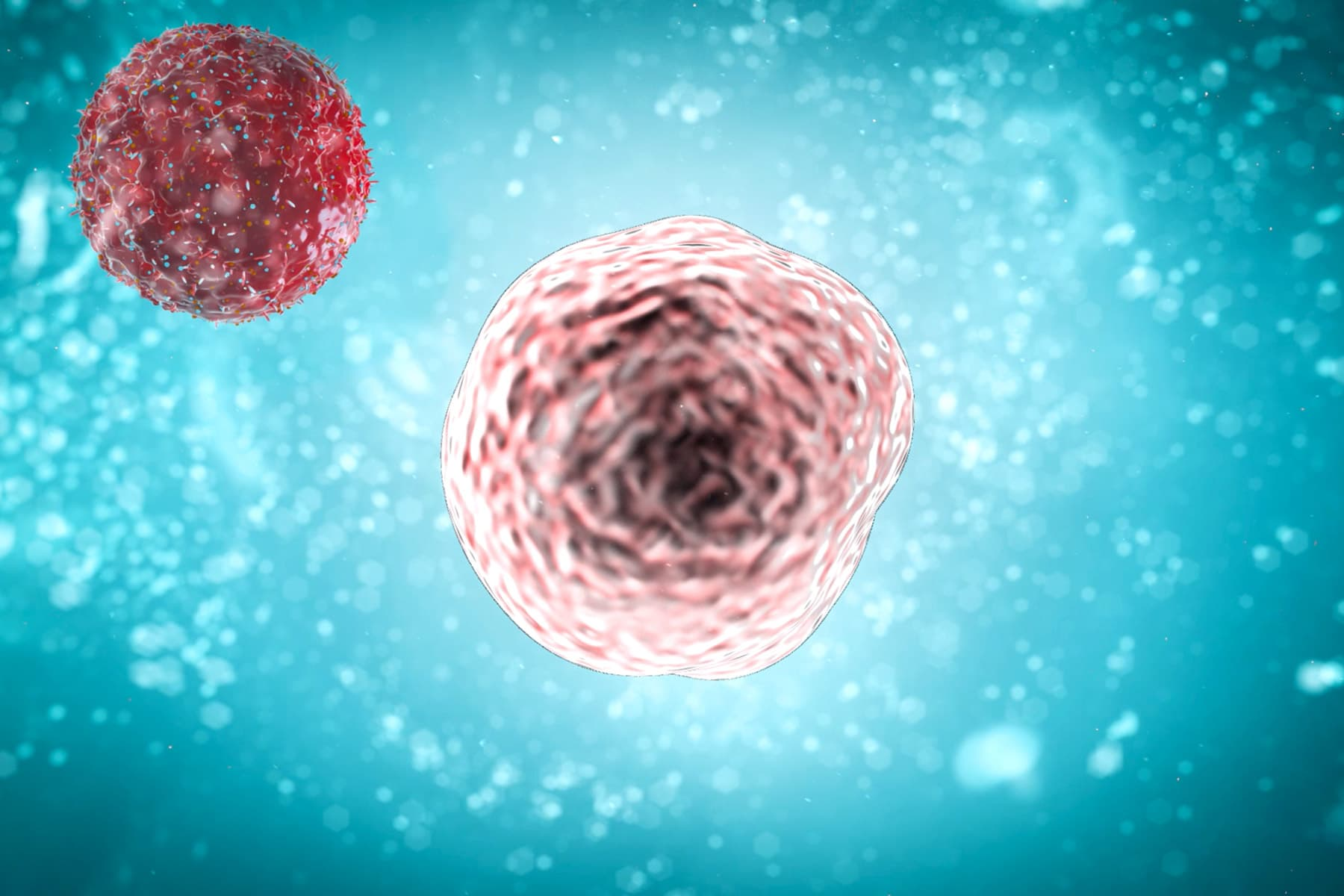 Immunotherapy May Boost Bladder Cancer Survival