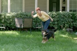 photo of woman throwing ball for dog