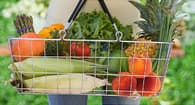 shopping basket filled with vegetables