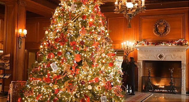 Video On 7 Safety Tips For Your Christmas Tree