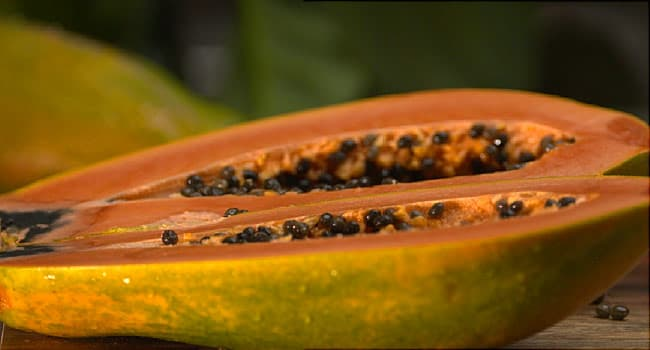Cavi Brand Papayas Linked to Salmonella Outbreak