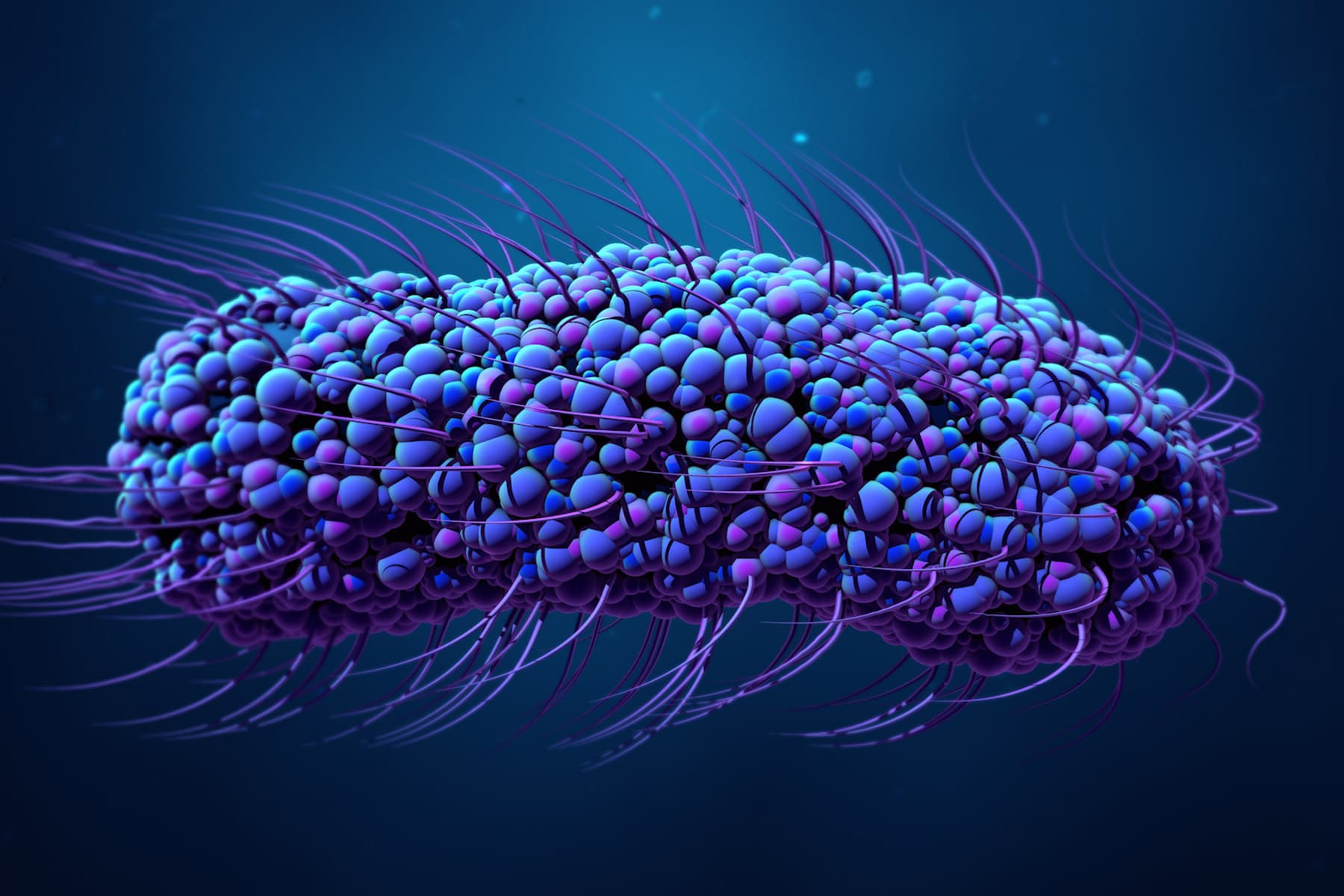 3d bacteria illustration