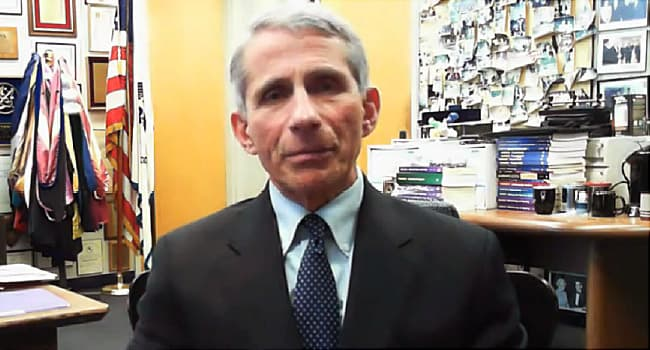 fauci answers questions