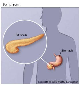 pancreatitis picture, symptoms, causes, and more, Sphenoid