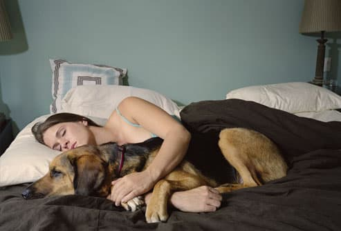 Woman Napping With Her Dog
