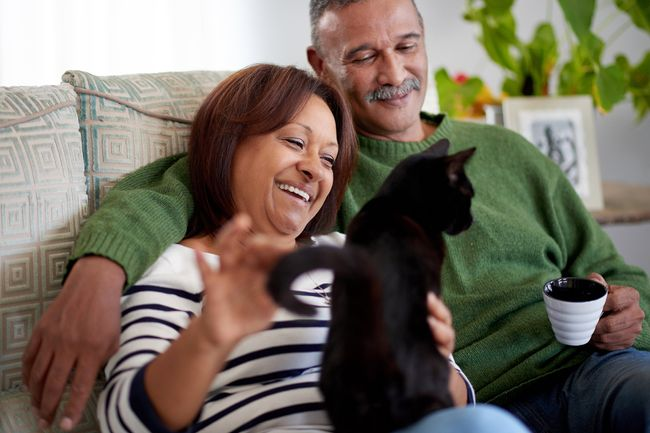 photo of mature couple playing with cat
