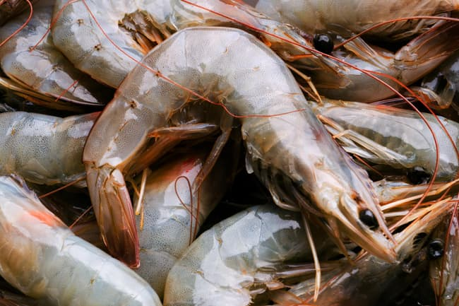 100-gram  shrimp offers 38% of your daily vitamin D requirements | TopTenHairCare.net