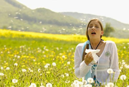 Photo of woman sneezing in flowering meadow