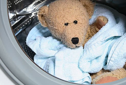 Teddy Bear in Washing Machine