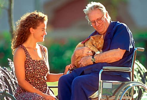 senior petting tabby cat