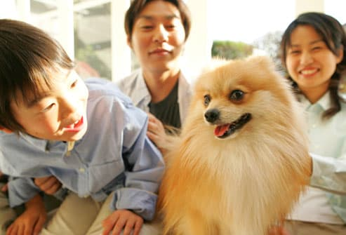 Family With Pomeranian Dog