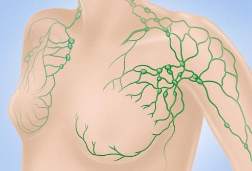 illustration of lymph nodes