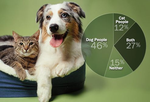 Articles Cats Better Than Dogs