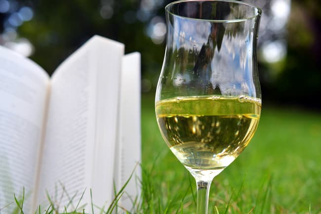 photo of wine and book outside