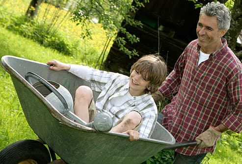 Father pushing son in wheelbarrow in garden