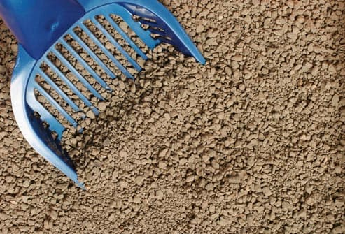 close up of cat litter
