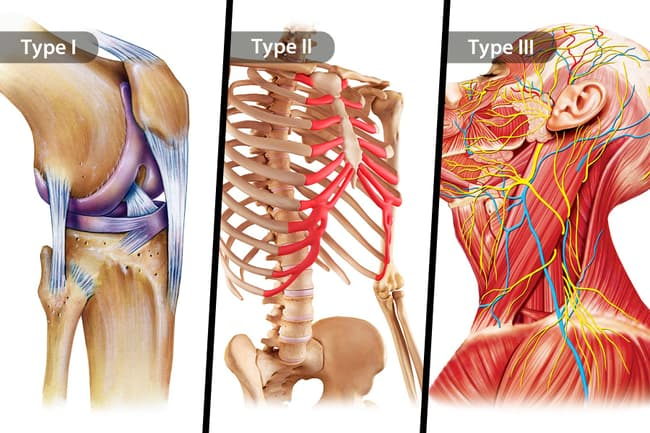 types of collagen triptych