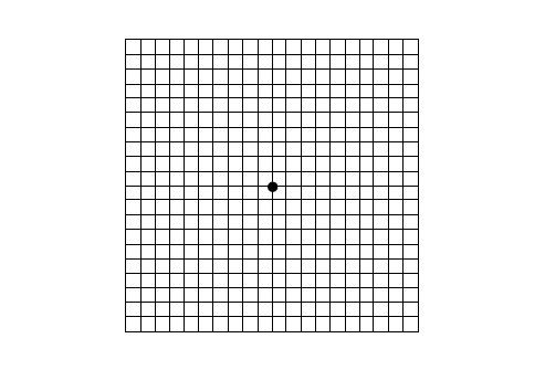 Amsler Grid Used To Detect Macular Degeneration