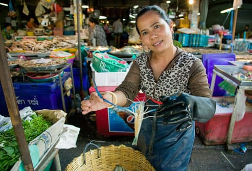 Woman in Thai market with fresh shrimp