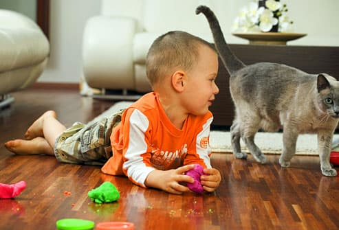 boy playing on floor with cat