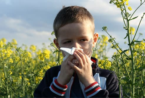 boy with tissue on the field of flowers