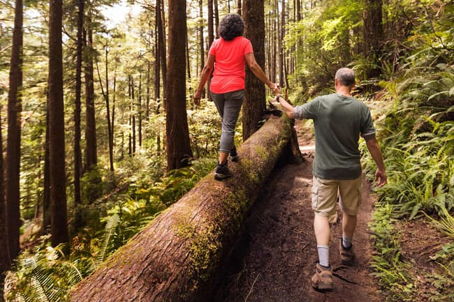 photo of couple walking in forest