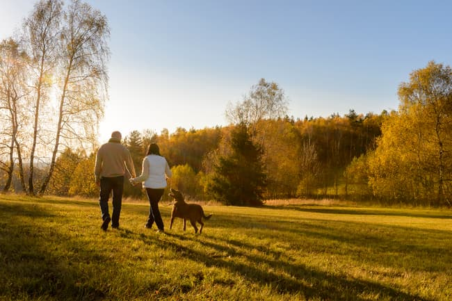 photo of couple walking dog