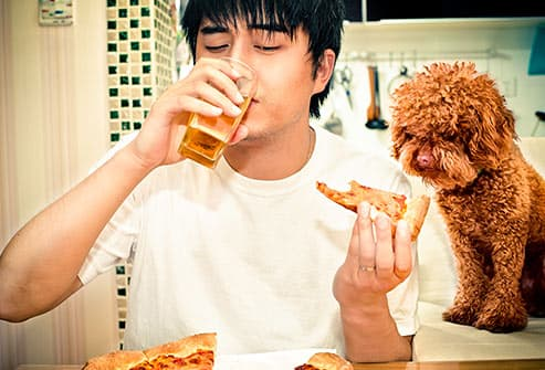 man eating pizza with dog