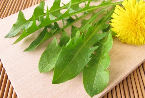 dandelion greens on plate