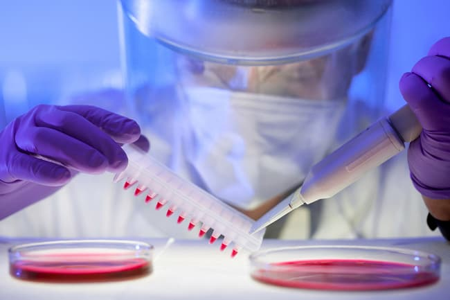 researcher working with blood