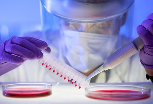researcher working with blood samples