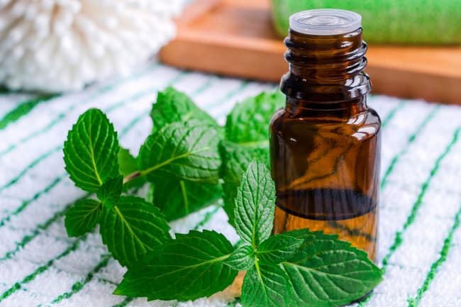 photo of peppermint oil