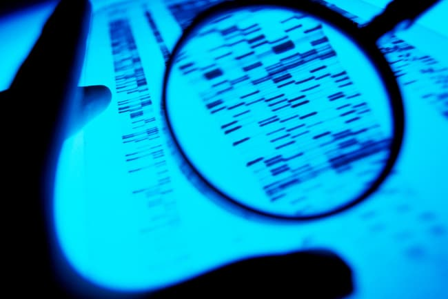 photo of studying dna sequence