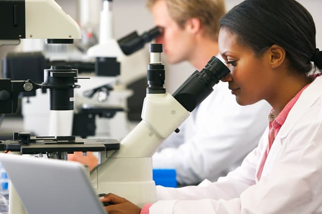 photo of researchers working on microscopes