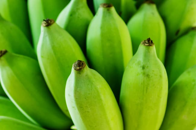 photo of unripe bananas